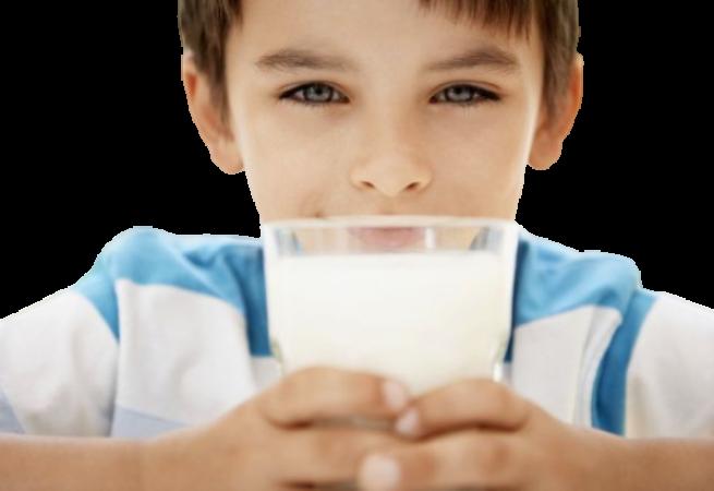 Programme lait à l'école