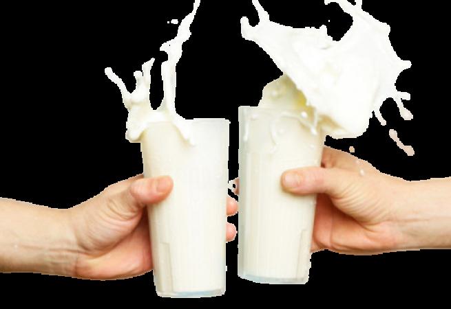 Livraison de lait bio pour le Programme produits laitiers à l'école